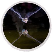 Flying Bat With Reflection Round Beach Towel