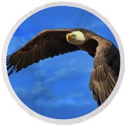 Round Beach Towel featuring the photograph Flying Eagle by Geraldine DeBoer