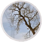 Flying Goose By Great Tree Round Beach Towel