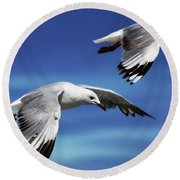 Flying High 0064 Round Beach Towel