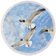Round Beach Towel featuring the photograph Flying High by Jan Amiss Photography