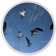 Flying High Seagulls Round Beach Towel