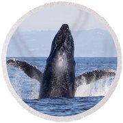 Flying Humpback Round Beach Towel