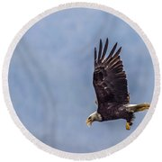 Round Beach Towel featuring the photograph Flying With His Mouth Full.  by Timothy Latta