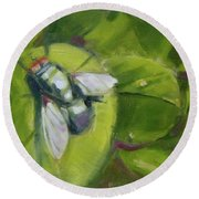 Fly's World Round Beach Towel by Mary Hubley