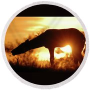 Foal Silhouette Round Beach Towel