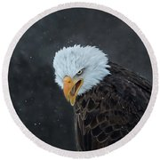 Focused Round Beach Towel by CR Courson