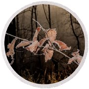 Round Beach Towel featuring the photograph Fog And Frost by Annette Berglund
