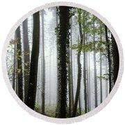 Round Beach Towel featuring the photograph Foggy Forest by Chevy Fleet