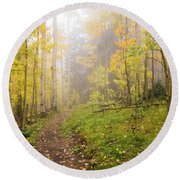Foggy Winsor Trail Aspens In Autumn 2 - Santa Fe National Forest New Mexico Round Beach Towel