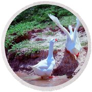 Round Beach Towel featuring the photograph Follow The Leader by Bonnie Willis