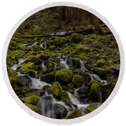 Forest Cathederal Round Beach Towel