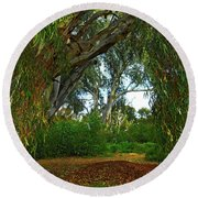 Round Beach Towel featuring the photograph Forest Dreams by Mark Blauhoefer