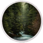 Round Beach Towel featuring the photograph Forest Enchantment by Cat Connor