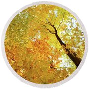 Forest Fall Yellow  Round Beach Towel