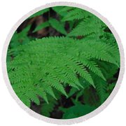 Forest Fern Round Beach Towel