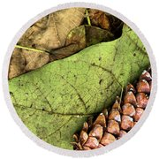 Forest Floor Still Life Round Beach Towel