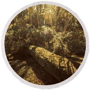 Forest In Fall Round Beach Towel