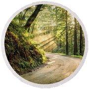 Forest Light Round Beach Towel