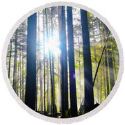 Forest Light Rays Round Beach Towel
