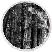 Forest Monochrome Round Beach Towel