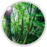 Round Beach Towel featuring the photograph Forest Path by Bee-Bee Deigner