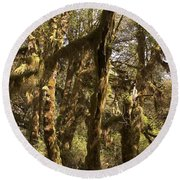 Forest Setting In Hoh Rain Forest Round Beach Towel