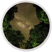 Round Beach Towel featuring the photograph Forest Star Patch by T Brian Jones