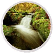 Round Beach Towel featuring the photograph Forest Stream by Jorge Maia