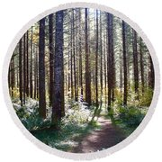 Forest Stroll Round Beach Towel
