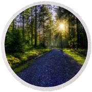 Forest Sunlight Round Beach Towel by Ian Mitchell