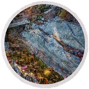Round Beach Towel featuring the photograph Forest Tidal Pool In Granite, Harpswell, Maine  -100436-100438 by John Bald