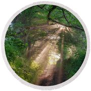 Round Beach Towel featuring the photograph Forest Trail by Fabrizio Troiani