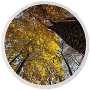 Forest Trees-yellow-orange Round Beach Towel