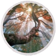 Forest With Fog And Sun Rays Round Beach Towel