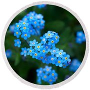 Forget -me-not 5 Round Beach Towel