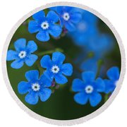 Round Beach Towel featuring the photograph Forget-me-not by Arlene Carmel