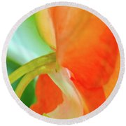 Round Beach Towel featuring the photograph Forget Me Not by Bill Gallagher