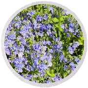 Forget-me-not - Myosotis Round Beach Towel