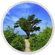 Fort Fisher Hilltop Tree Round Beach Towel