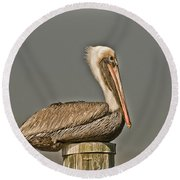 Fort Pierce Pelican Round Beach Towel