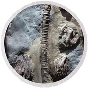 Fossil Remains  Round Beach Towel