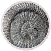 Fossil Spiral  Round Beach Towel