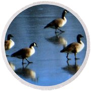 Four Geese Walking On Ice Round Beach Towel