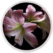 Four Pink Amaryllis Blooms Round Beach Towel