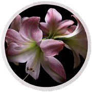 Four Pink Amaryllis Blooms Round Beach Towel