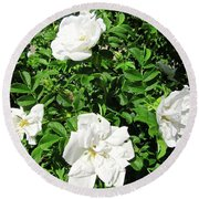 Round Beach Towel featuring the photograph Four White Roses by Stephanie Moore