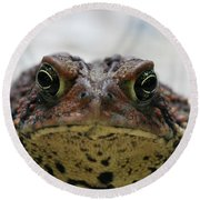 Fowler's Toad #3 Round Beach Towel