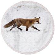 Fox 3 Round Beach Towel