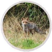 Fox In The Woods Round Beach Towel